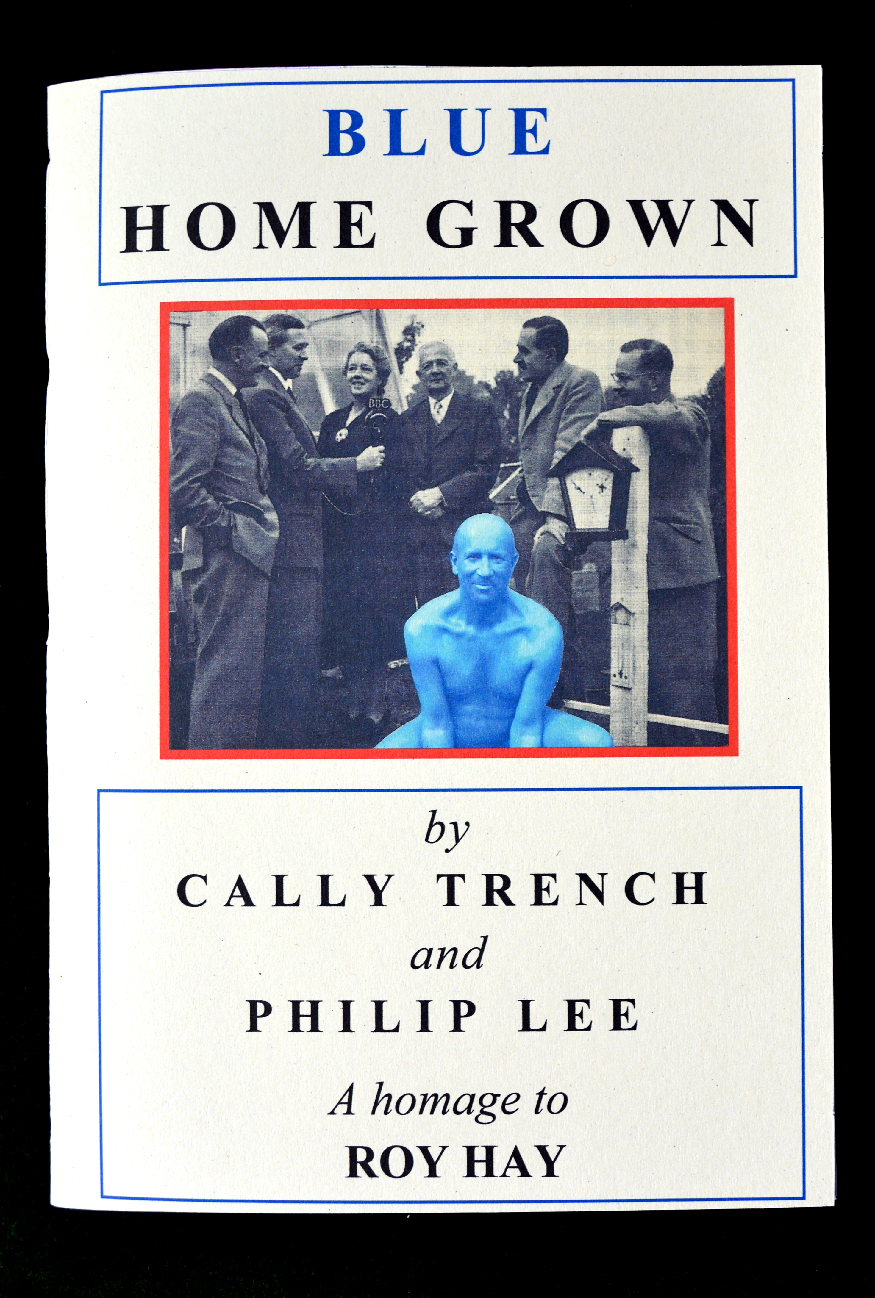 Cally Trench & Philip Lee, Blue Home Grown (2011) cover