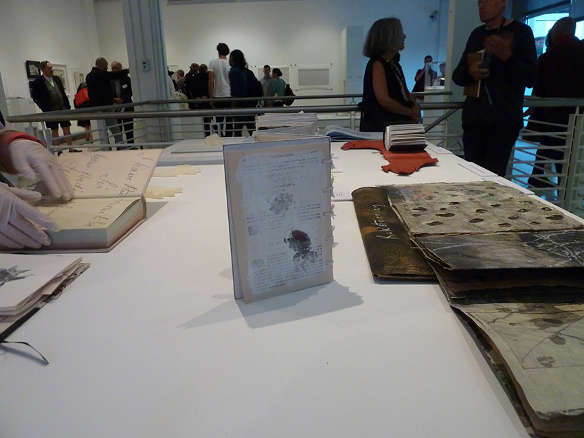 Exhibition view: BOOKNESSES: SOUTH AFRICAN ARTISTS' BOOKS