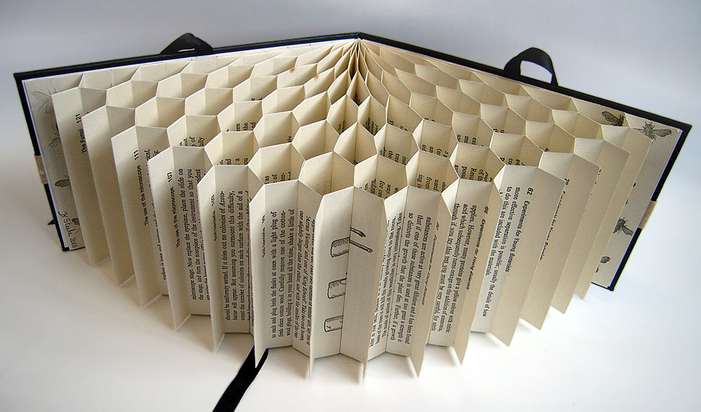 Cfpr book arts exhibitions and events regenerator ii for Books with art projects